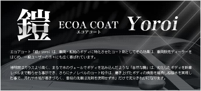 ecoa_main_image_690x312